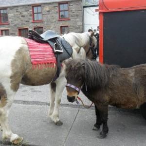 Ballinclare Fair: May/Bealtaine & October/Deireadh Fómhair