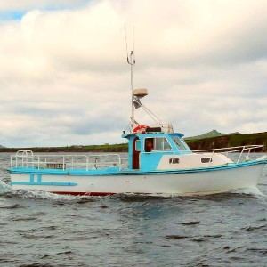 West Kerry Sea Angling and Eco Tours